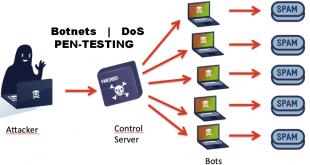 DoS | Botnet Specific Defensive Strategies