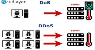Identifying Denial-of-Service and Distributed Denial-of-Service Attacks
