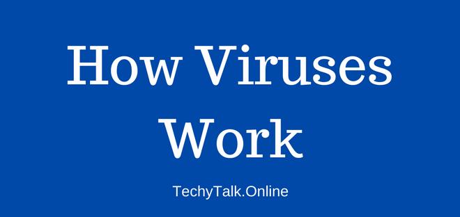 How Viruses Work