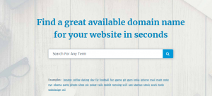 How to Choose a Good Domain Name (Search)