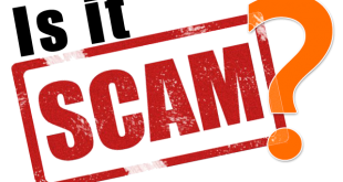 Online Teaching Fraud - Blogging Marketing and SEO