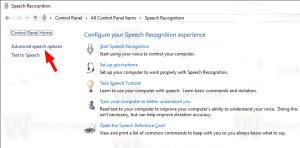 Speech Recongition Advanced Options