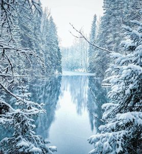 Finnish Photographer Shows The Beauty Of Fairy Forests In Finland 32