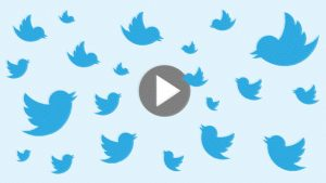 HOW TO TURN OFF AUTOPLAY VIDEOS ON TWITTER