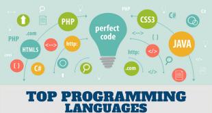 Five Programming Languages For Software Development [2020]