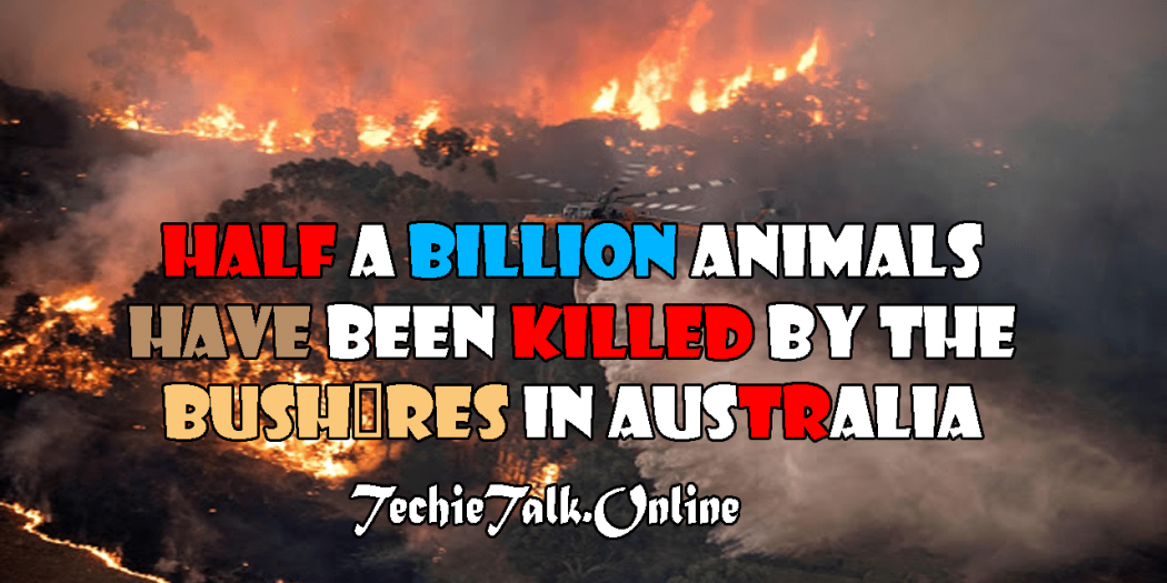 Half a Billion Animals have been Killed by the Bushfires in Australia