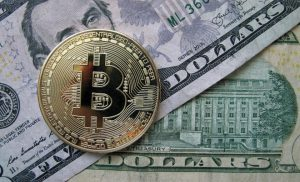 How Did Digital Dollar Set Down Bitcoin and Crypto Prices?