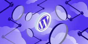 WordPress Course in Urdu/Hindi: Learn the Important Definitions & Abbreviations